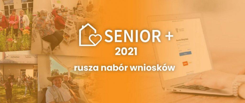 grafika program senior +